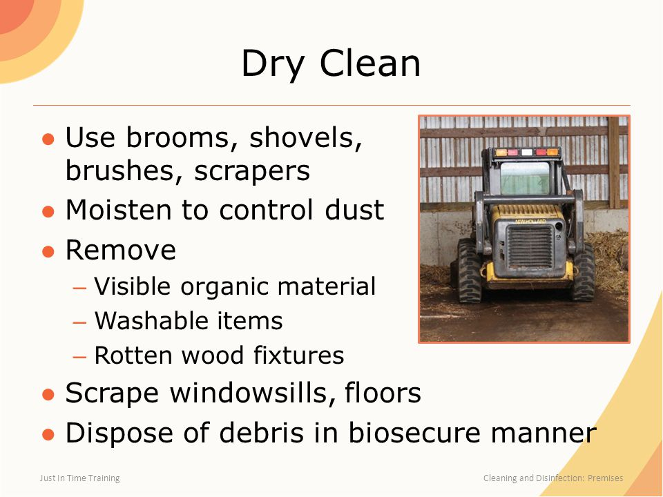 Dry Clean ●Use brooms, shovels, brushes, scrapers ●Moisten to control dust ●Remove – Visible organic material – Washable items – Rotten wood fixtures