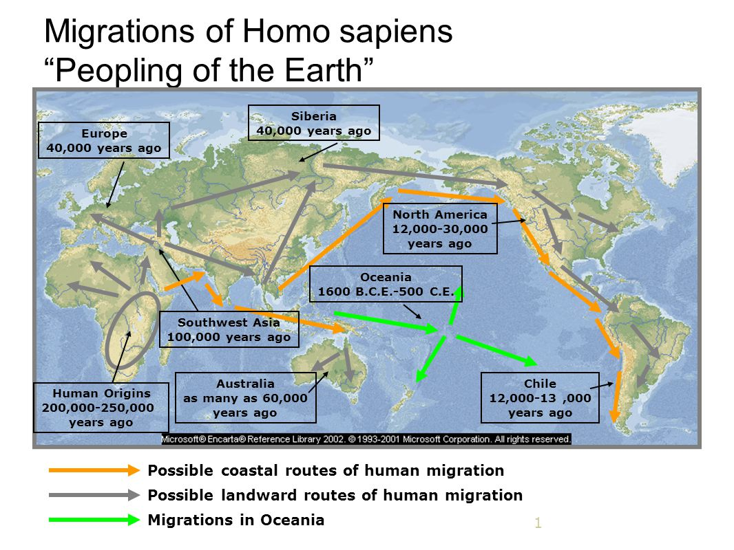 "1 Migrations of Homo sapiens ""Peopling of the Earth"" Possible coastal routes of human migration Possible landward routes of human migration Migrations"