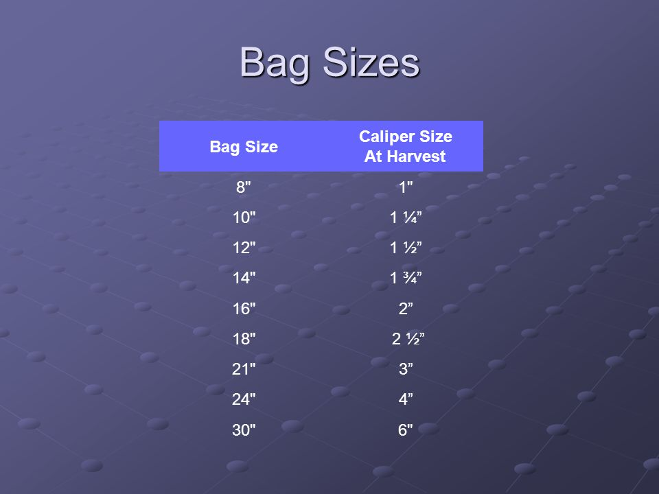 Bag Sizes Bag Size Caliper Size At Harvest 8 1 10 1 ¼ 12 1 ½ 14 1 ¾ 16 2 18 2 ½ 21 3 24 4 30 6