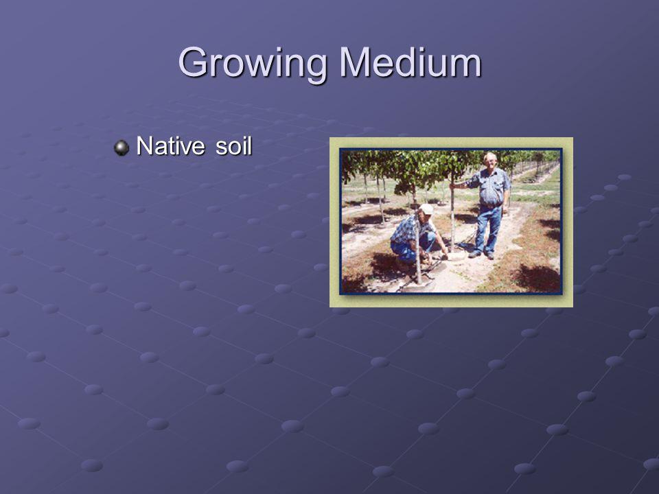 Watering Drip irrigation