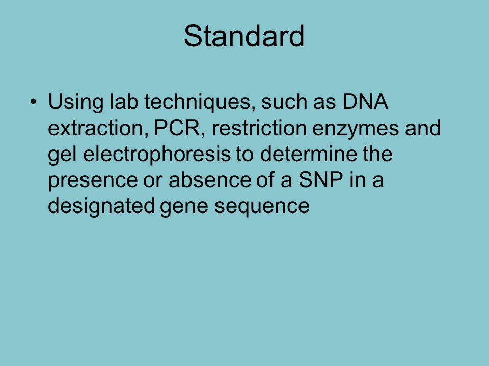 With this lab, I can… Extract my own DNA from my cheek cells Amplify my DNA using PCR Understand how HAEIII enzyme will identify a SNP in genotype Determine my own genotype using gel electrophoresis
