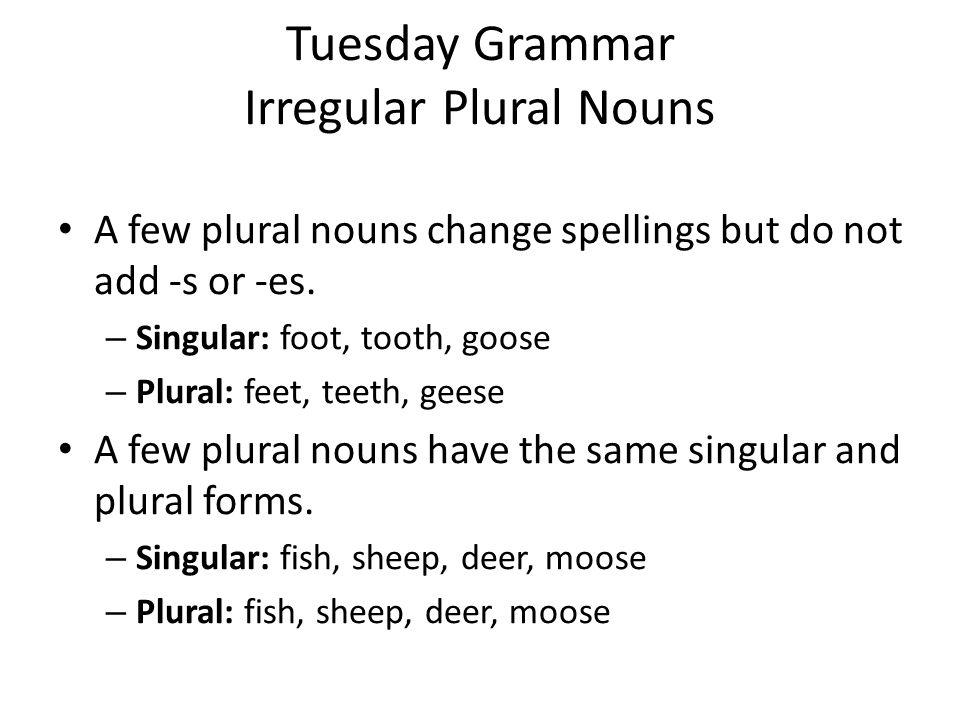 Tuesday Grammar Irregular Plural Nouns Practice: Supply the correct plural form of the noun for each sentence.