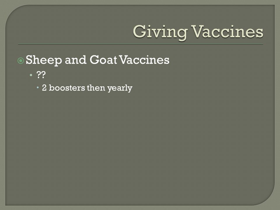  Sheep and Goat Vaccines ??  2 boosters then yearly