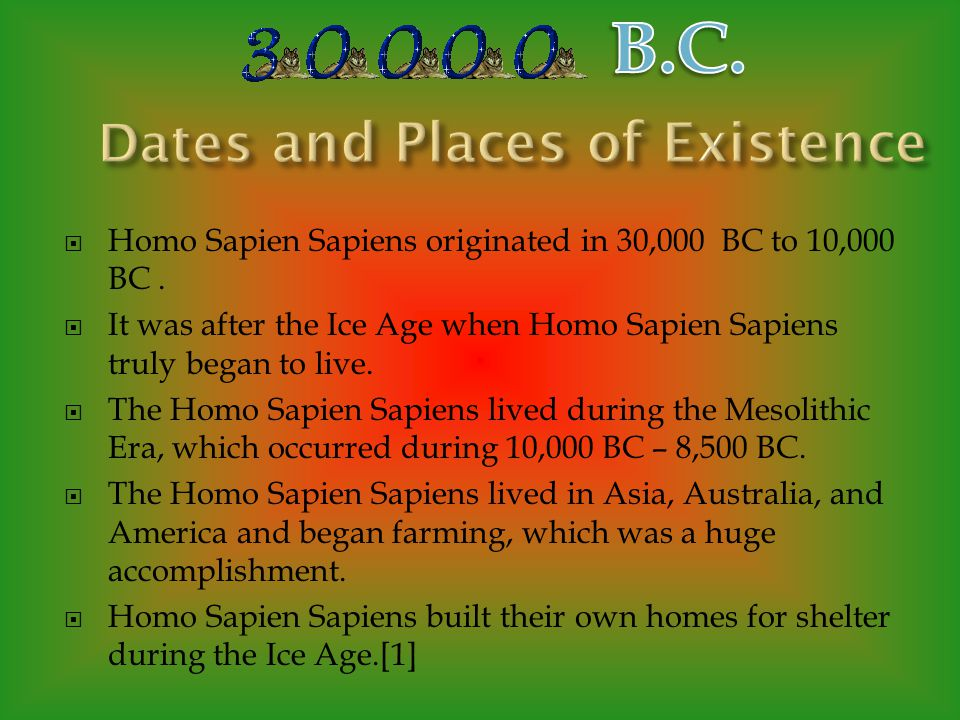Many of you might think that Homo Sapien Sapiens looked like chimp-like creatures, but really, they looked just like modern day humans. Throughout thi