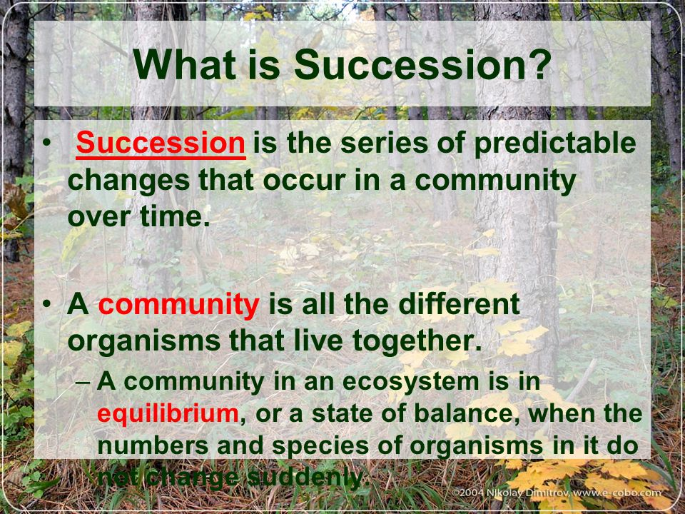 Secondary succession - takes place where a community has been removed, e.g., in a plowed field or a clear-cut forest or fire.