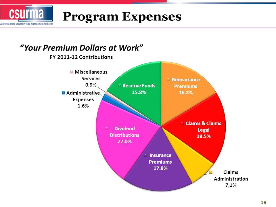 Program Expenses 18