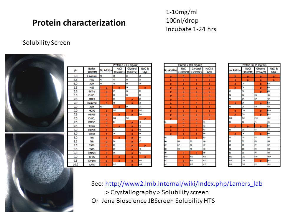 Solubility Screen Protein characterization 1-10mg/ml 100nl/drop Incubate 1-24 hrs See: http://www2.lmb.internal/wiki/index.php/Lamers_labhttp://www2.lmb.internal/wiki/index.php/Lamers_lab > Crystallography > Solubility screen Or Jena Bioscience JBScreen Solubility HTS