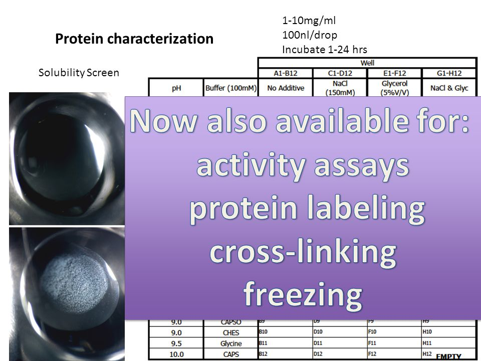 Solubility Screen Protein characterization 1-10mg/ml 100nl/drop Incubate 1-24 hrs