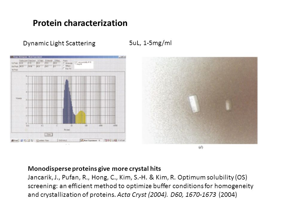 Dynamic Light Scattering Protein characterization Monodisperse proteins give more crystal hits Jancarik, J., Pufan, R., Hong, C., Kim, S.-H.