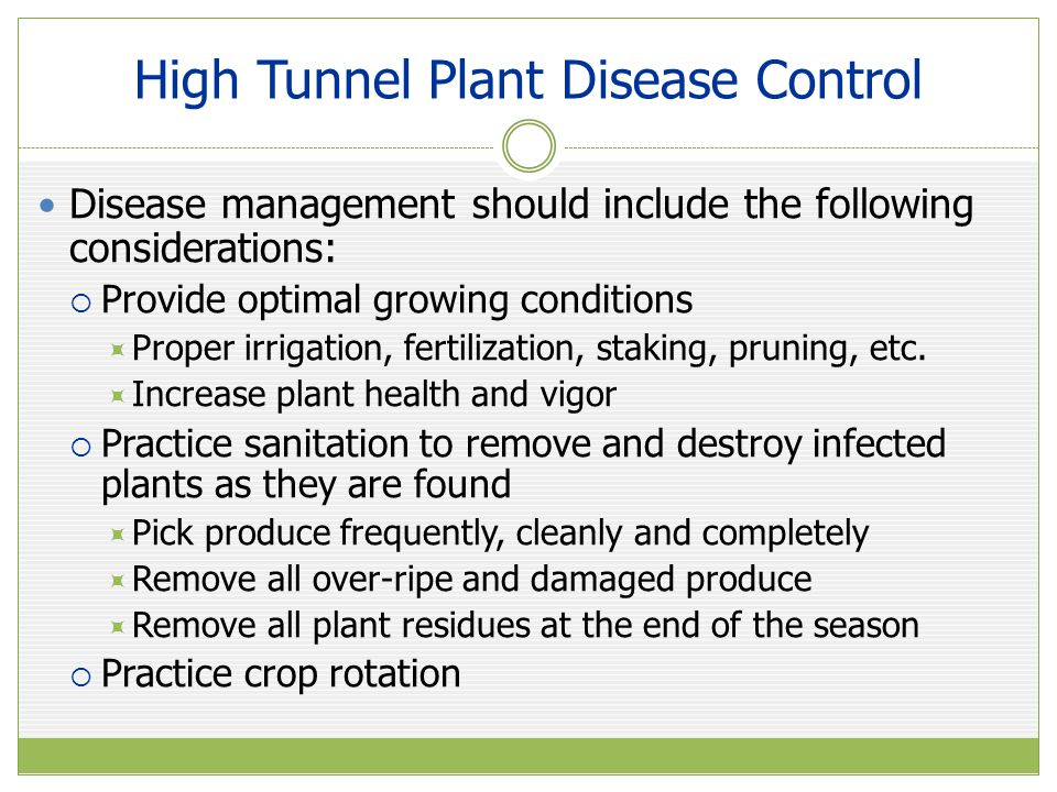 High Tunnel Plant Disease Control Disease management should include the following considerations:  Provide optimal growing conditions  Proper irrigation, fertilization, staking, pruning, etc.