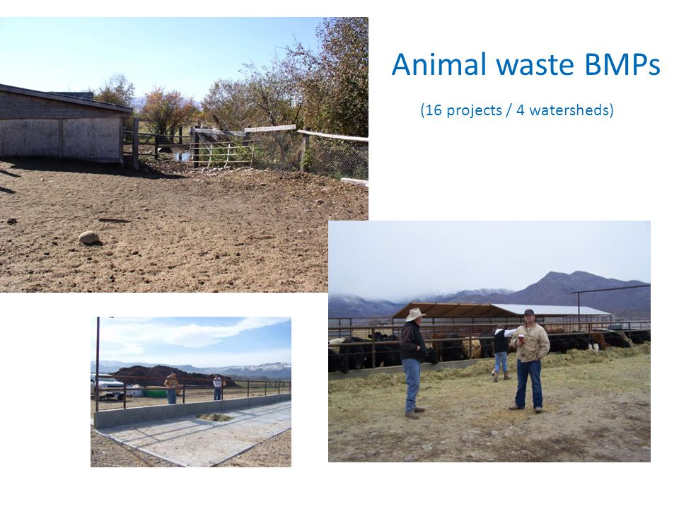 Animal waste BMPs (16 projects / 4 watersheds)