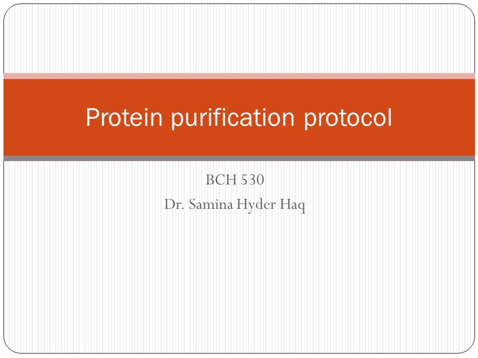 BCH 530 Dr. Samina Hyder Haq Protein purification protocol