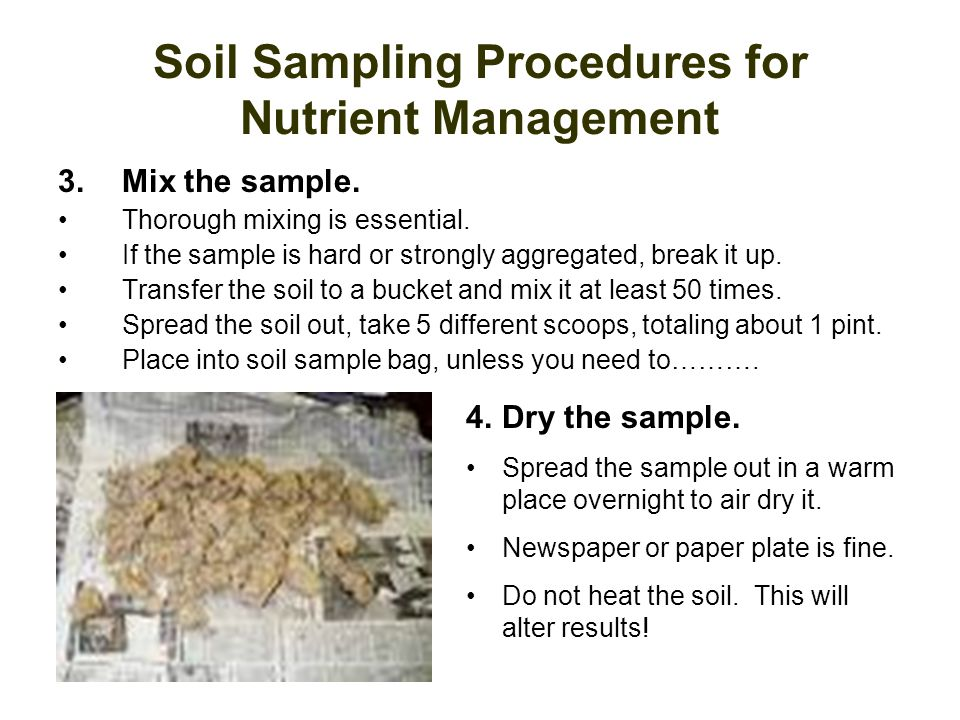 Soil Sampling Procedures for Nutrient Management 3.Mix the sample. Thorough mixing is essential. If the sample is hard or strongly aggregated, break i