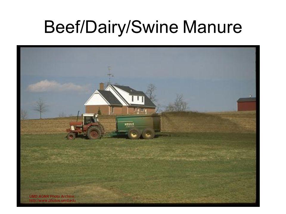 Beef/Dairy/Swine Manure UMD-AGNR Photo Archive; http://www.photos.umd.edu
