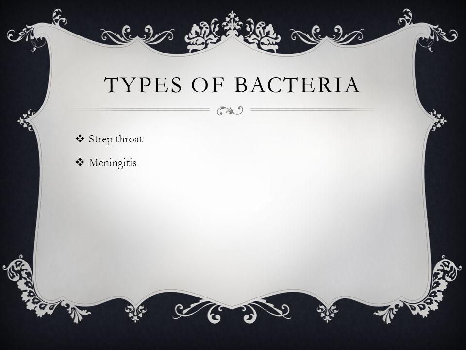TYPES OF BACTERIA  Strep throat  Meningitis