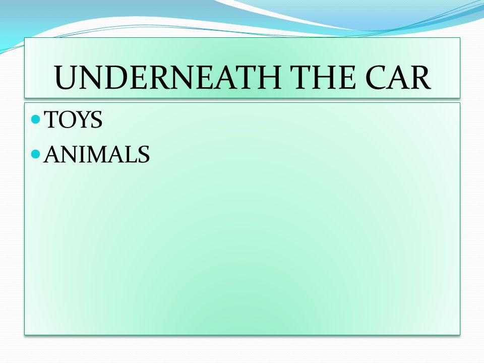 UNDERNEATH THE CAR TOYS ANIMALS TOYS ANIMALS