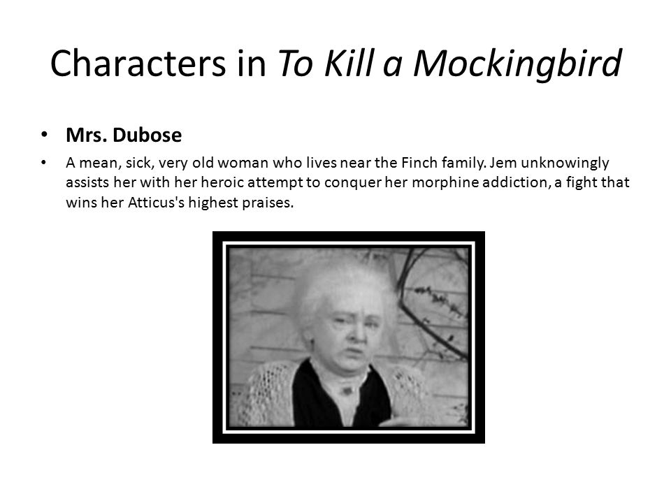 characterization used in to kill a mockingbird by lee harper Get an answer for 'how does harper lee use language to enhance characterization in to kill a mockingbird' and find homework help for other to kill a mockingbird questions at enotes.