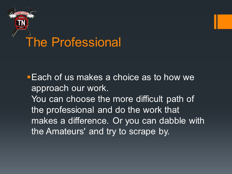 The Professional  Each of us makes a choice as to how we approach our work.
