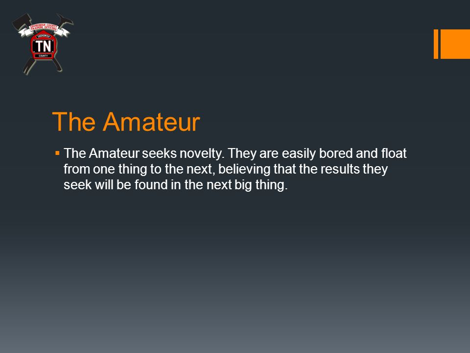 The Amateur  The Amateur seeks novelty.