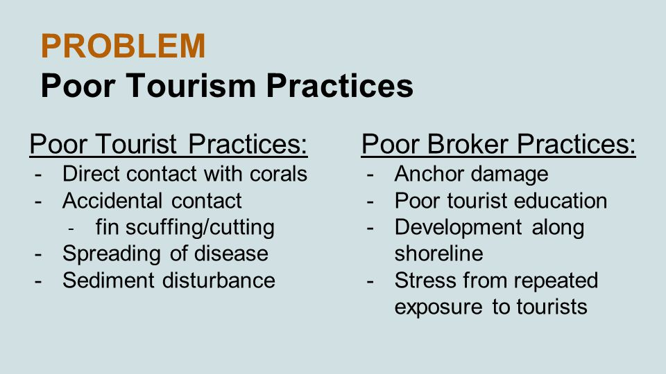 PROBLEM Poor Tourism Practices Poor Tourist Practices: -Direct contact with corals -Accidental contact - fin scuffing/cutting -Spreading of disease -Sediment disturbance Poor Broker Practices: -Anchor damage -Poor tourist education -Development along shoreline -Stress from repeated exposure to tourists