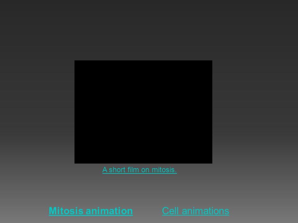 Mitosis animationCell animations A short film on mitosis.