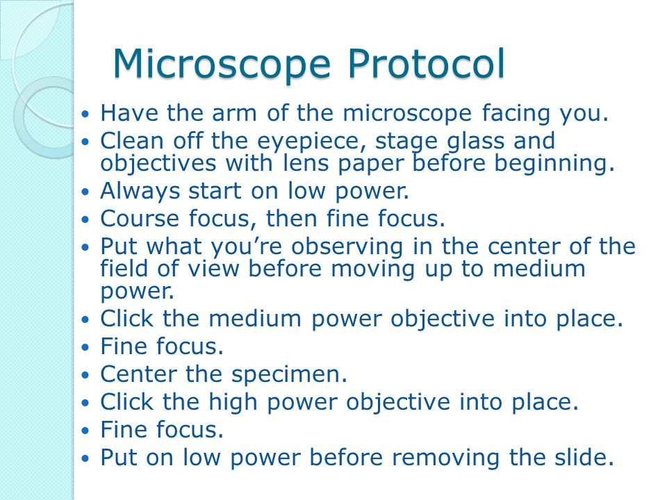 Microscope Protocol Have the arm of the microscope facing you. Clean off the eyepiece, stage glass and objectives with lens paper before beginning. Al