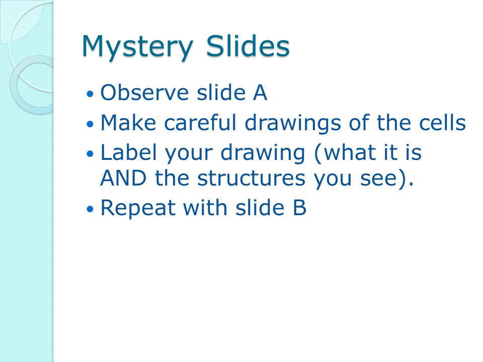 Mystery Slides Observe slide A Make careful drawings of the cells Label your drawing (what it is AND the structures you see). Repeat with slide B