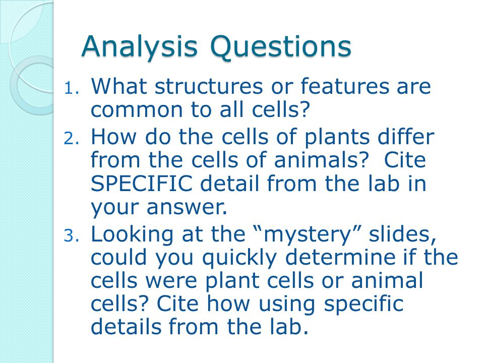 Analysis Questions 1. What structures or features are common to all cells? 2. How do the cells of plants differ from the cells of animals? Cite SPECIF
