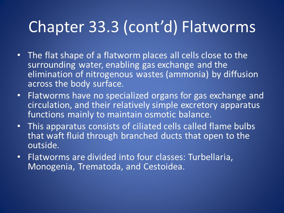 Chapter 33.3 (cont'd) Flatworms The flat shape of a flatworm places all cells close to the surrounding water, enabling gas exchange and the elimination of nitrogenous wastes (ammonia) by diffusion across the body surface.