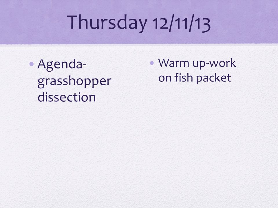 Thursday 12/11/13 Agenda- grasshopper dissection Warm up-work on fish packet