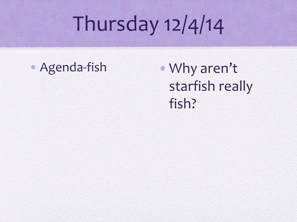 Thursday 12/4/14 Agenda-fish Why aren't starfish really fish