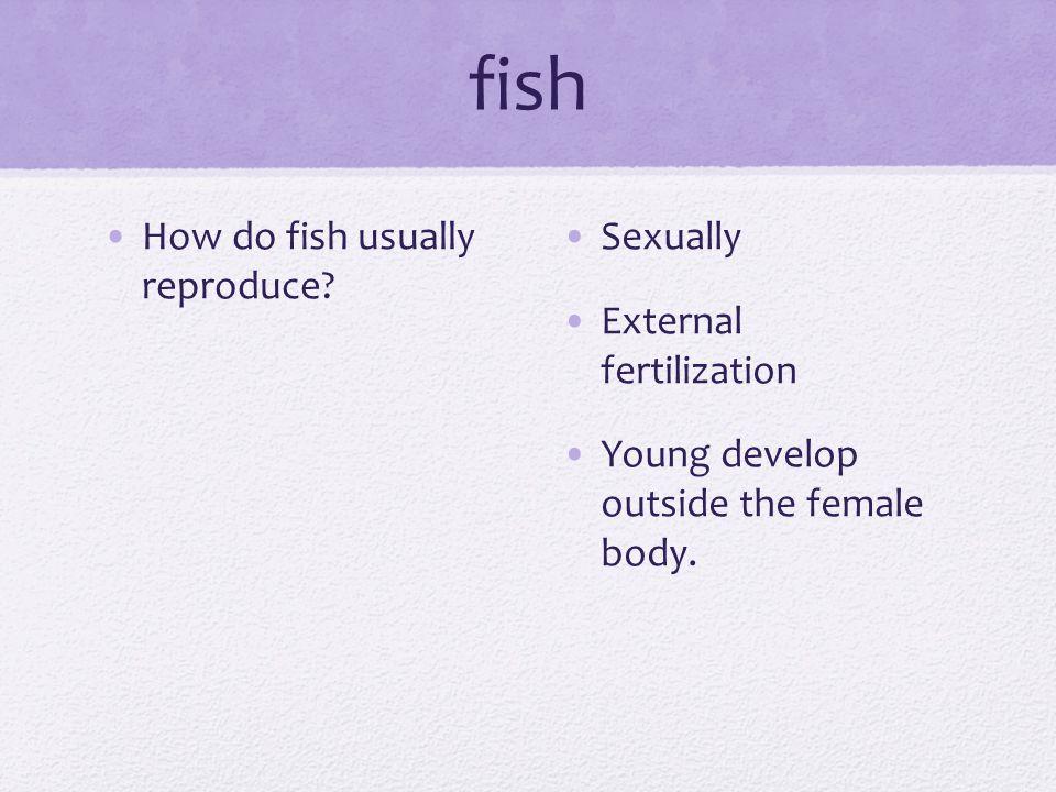 fish How do fish usually reproduce.