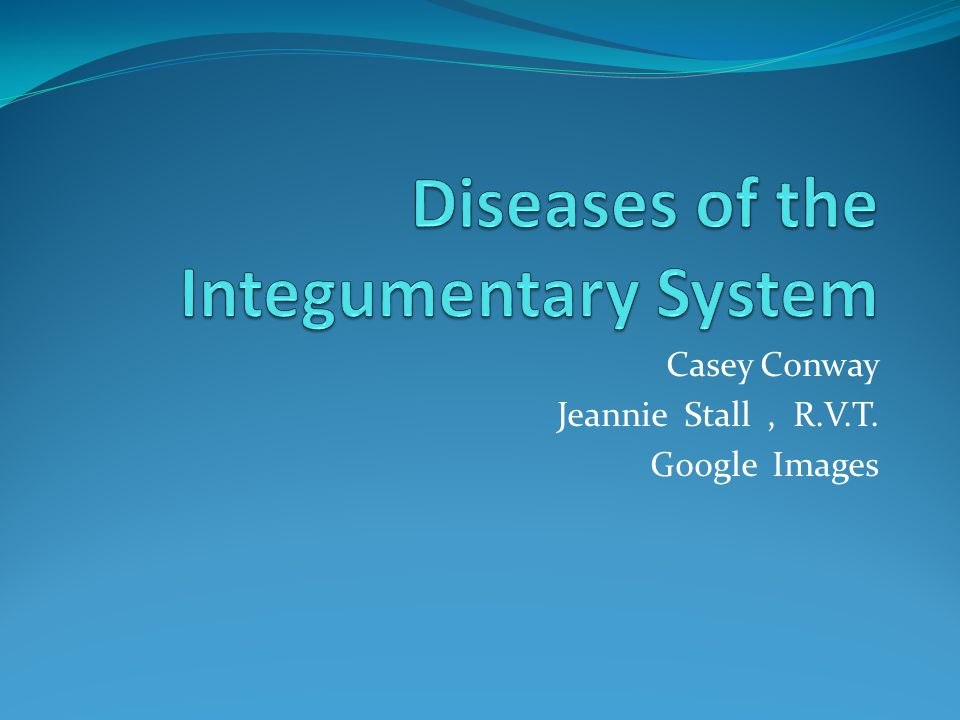 Casey Conway Jeannie Stall, R.V.T. Google Images