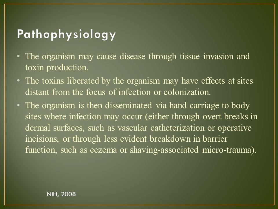 The organism may cause disease through tissue invasion and toxin production.