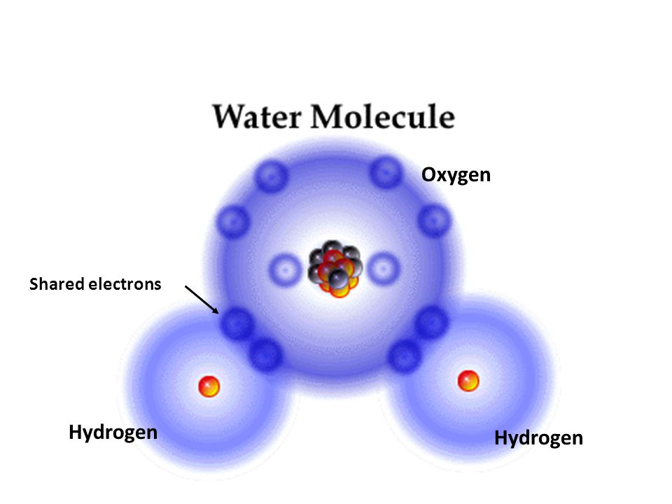 Shared electrons Hydrogen Oxygen