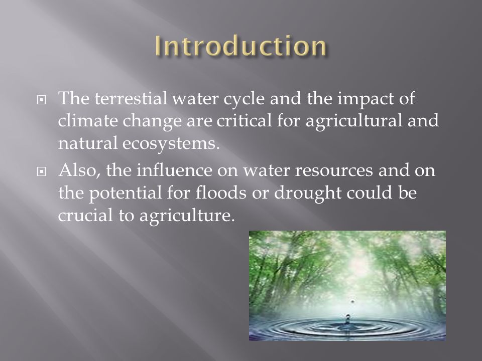  The terrestial water cycle and the impact of climate change are critical for agricultural and natural ecosystems.