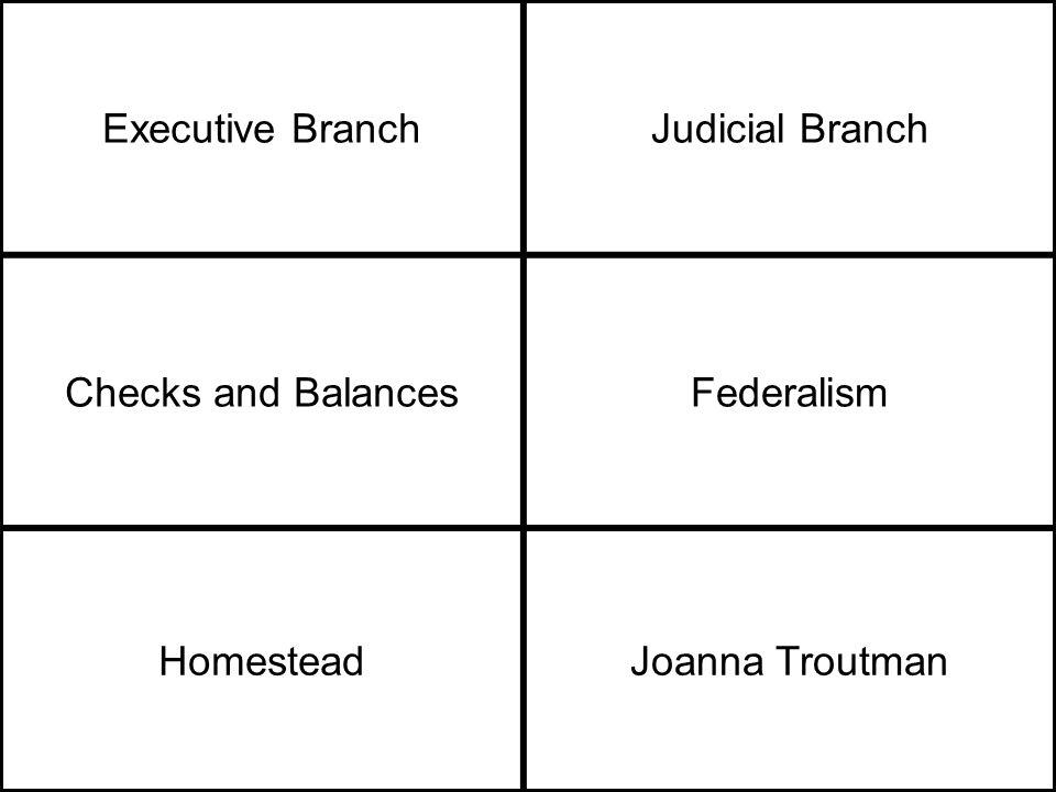 Executive BranchJudicial Branch Checks and BalancesFederalism HomesteadJoanna Troutman