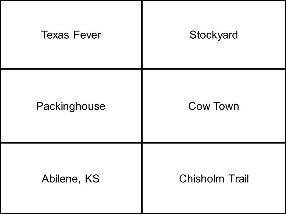 Texas FeverStockyard PackinghouseCow Town Abilene, KSChisholm Trail