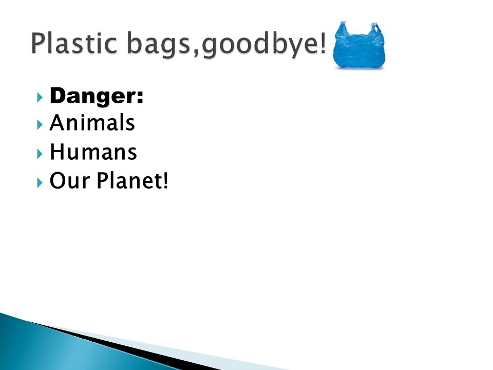  Danger:  Animals  Humans  Our Planet!