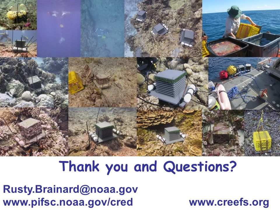 Thank you and Questions? Rusty.Brainard@noaa.gov www.pifsc.noaa.gov/cred www.creefs.org
