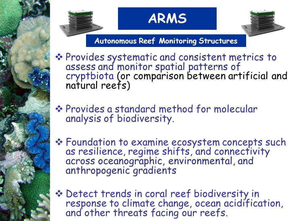  Provides systematic and consistent metrics to assess and monitor spatial patterns of cryptbiota (or comparison between artificial and natural reefs)