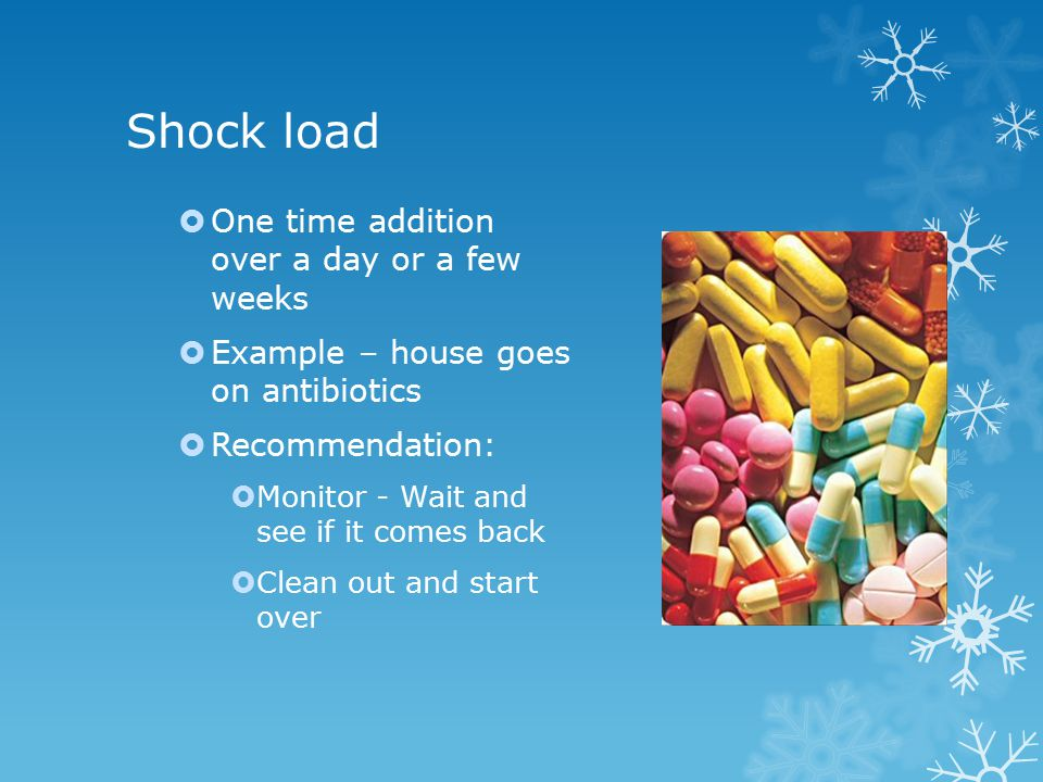 Shock load  One time addition over a day or a few weeks  Example – house goes on antibiotics  Recommendation:  Monitor - Wait and see if it comes back  Clean out and start over