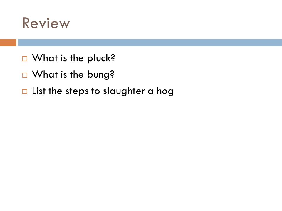Review  What is the pluck?  What is the bung?  List the steps to slaughter a hog
