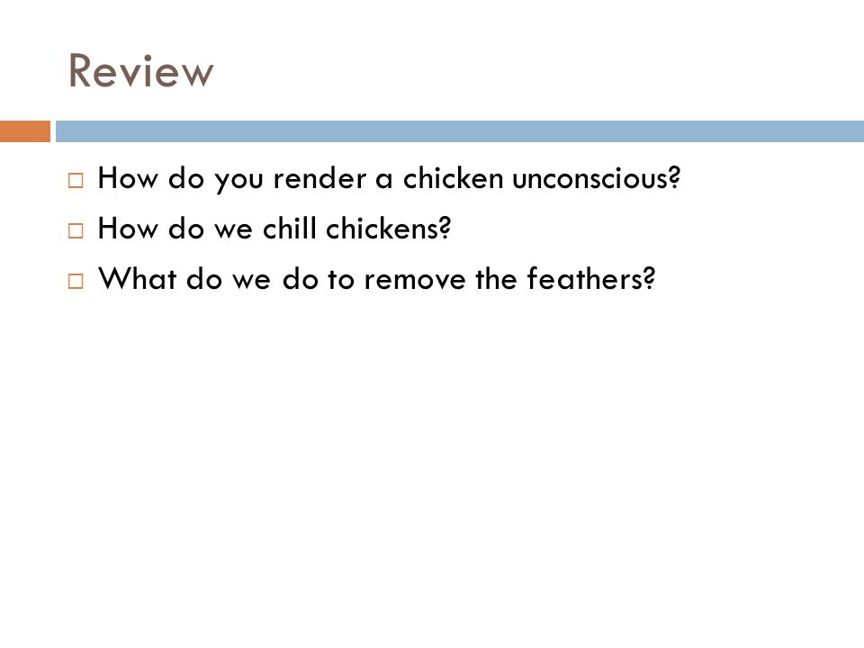 Review  How do you render a chicken unconscious.  How do we chill chickens.
