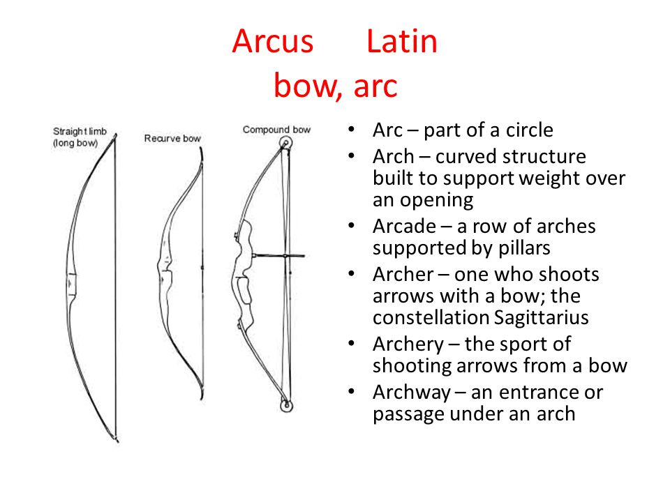 ArcusLatin bow, arc Arc – part of a circle Arch – curved structure built to support weight over an opening Arcade – a row of arches supported by pilla
