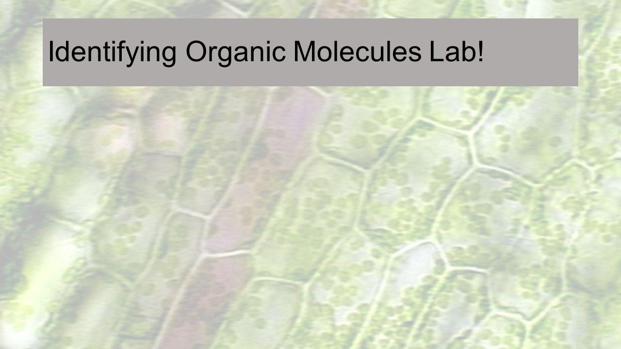 Identifying Organic Molecules Lab!