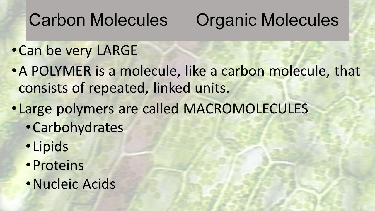Can be very LARGE A POLYMER is a molecule, like a carbon molecule, that consists of repeated, linked units. Large polymers are called MACROMOLECULES C