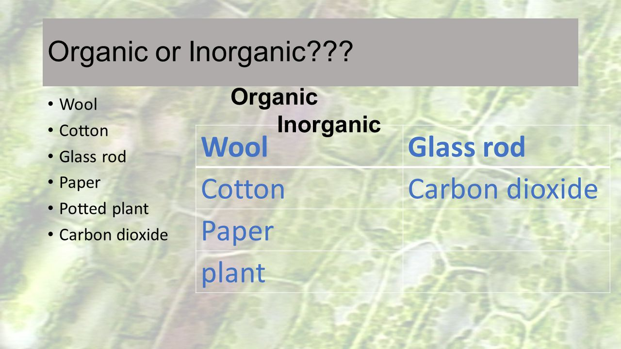 What are organic foods.