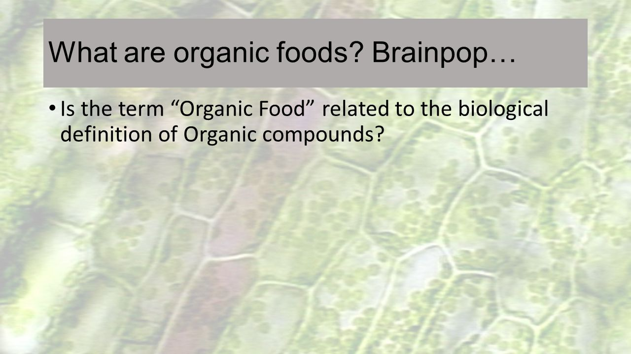"""What are organic foods? Brainpop… Is the term """"Organic Food"""" related to the biological definition of Organic compounds?"""