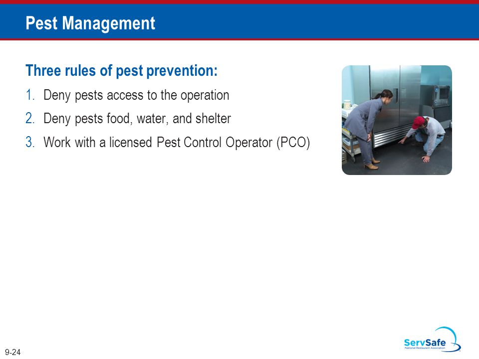 Pest Management Three rules of pest prevention: 1.Deny pests access to the operation 2.Deny pests food, water, and shelter 3.Work with a licensed Pest Control Operator (PCO) 9-24